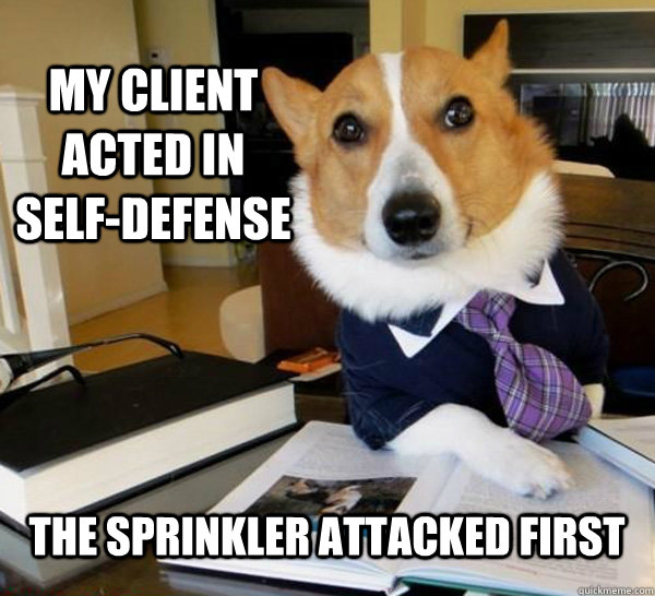 my client acted in selfdefense the sprinkler attacked first - Lawyer Dog