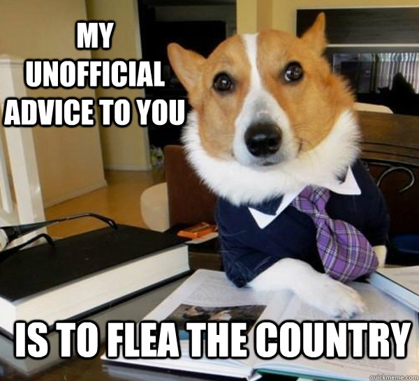 my unofficial advice to you is to flea the country - Lawyer Dog