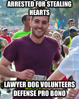 arrested for stealing hearts lawyer dog volunteers defense p - Ridiculously photogenic guy