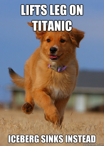 lifts leg on titanic iceberg sinks instead - Ridiculously Photogenic Puppy