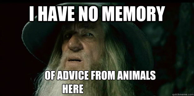i have no memory of advice from - I have no memory Gandalf