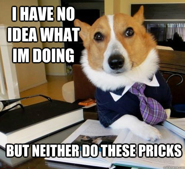 i have no idea what im doing but neither do these pricks - Lawyer Dog