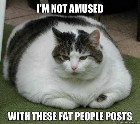 im not amused with these fat people posts - Chubby Cat