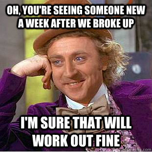 oh youre seeing someone new a week after we broke up im s - Condescending Wonka