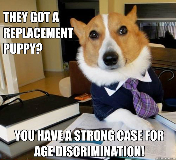 they got a replacement puppy you have a strong case for age - Lawyer Dog