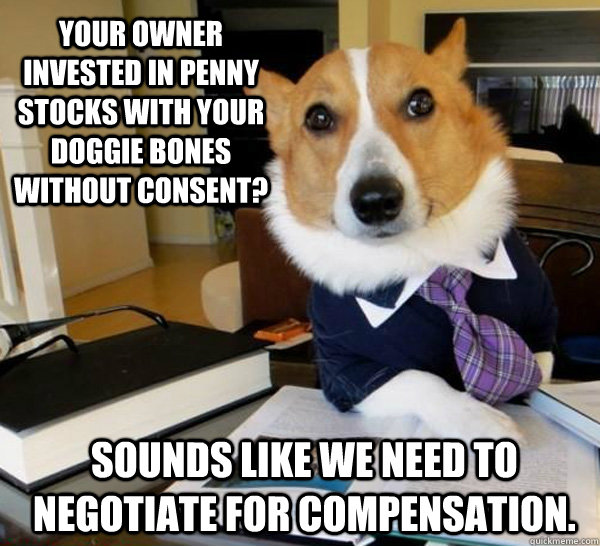 your owner invested in penny stocks with your doggie bones w - Lawyer Dog