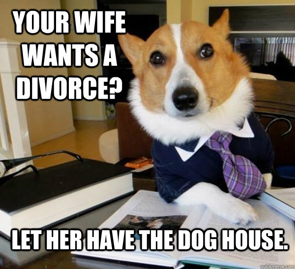 your wife wants a divorce let her have the dog house  - Lawyer Dog