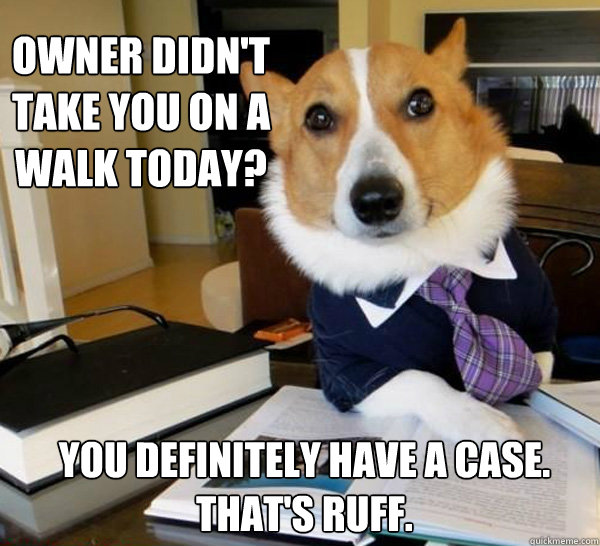 owner didnt take you on a walk today you definitely have a - Lawyer Dog