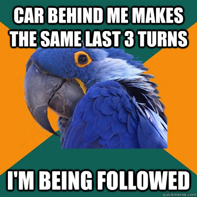 car behind me makes the same last 3 turns im being followed - Paranoid Parrot