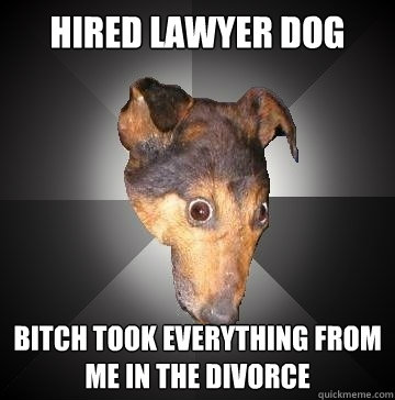 hired lawyer dog bitch took everything from me in the divorc - Depression Dog