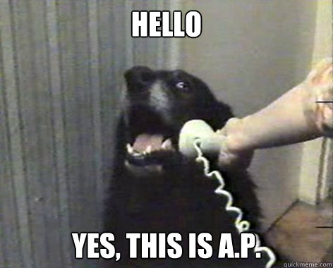hello yes this is ap - ap dog