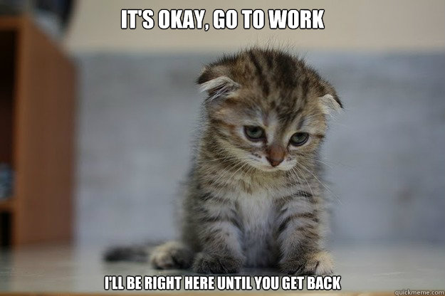 its okay go to work ill be right here until you get back - Sad Kitten