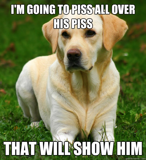 im going to piss all over his piss that will show him - Dog Logic