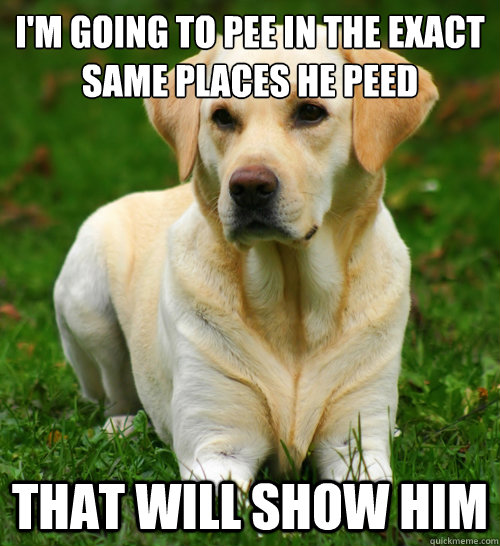 im going to pee in the exact same places he peed that will  - Dog Logic
