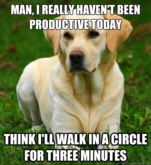 man i really havent been productive today think ill walk - Dog Logic