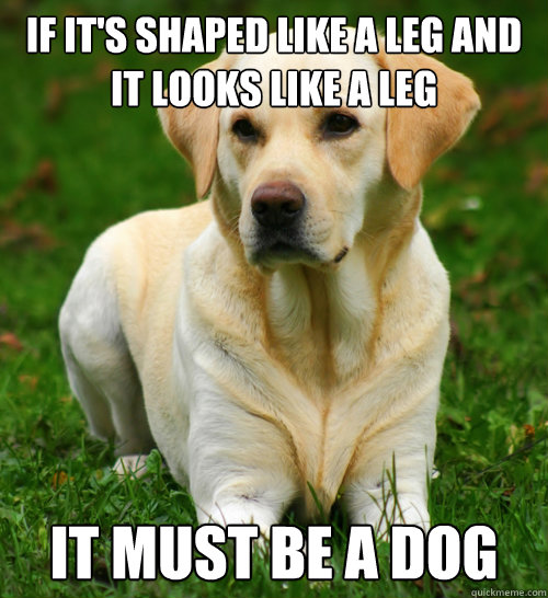if its shaped like a leg and it looks like a leg it must be - Dog Logic