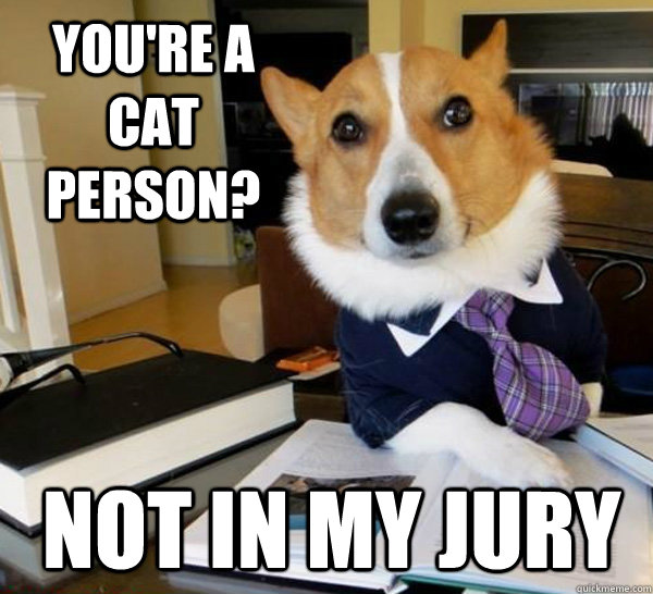 youre a cat person not in my jury - Lawyer Dog