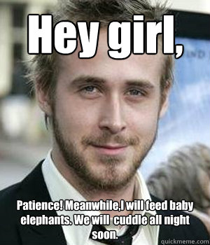 hey girl patience meanwhilei will feed baby elephants we - Ryan gosling