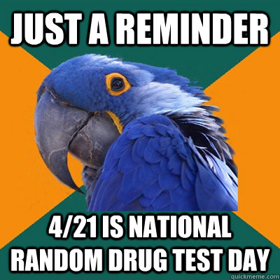just a reminder 421 is national random drug test day - Paranoid Parrot