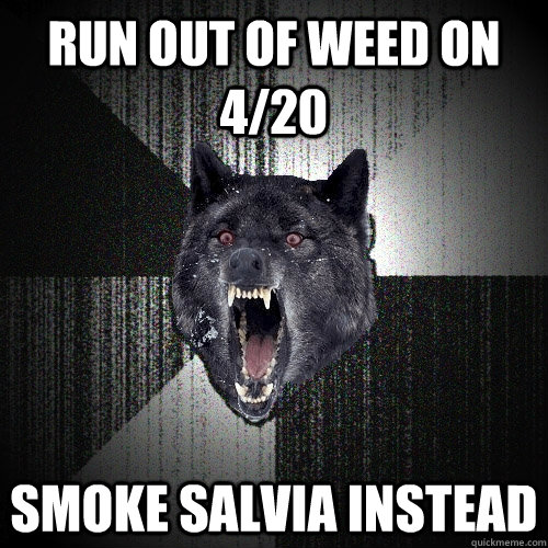 run out of weed on 420 smoke salvia instead - Insanity Wolf