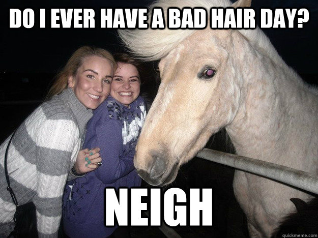 do i ever have a bad hair day neigh - RPH