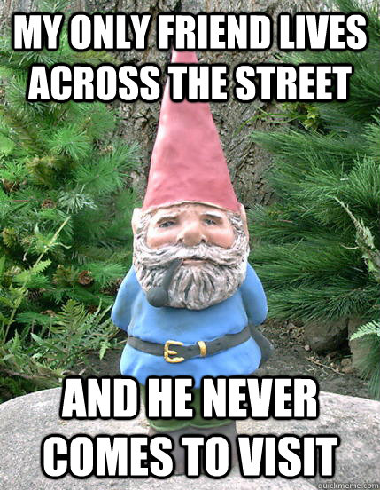 my only friend lives across the street and he never comes to - Forever a Gnome