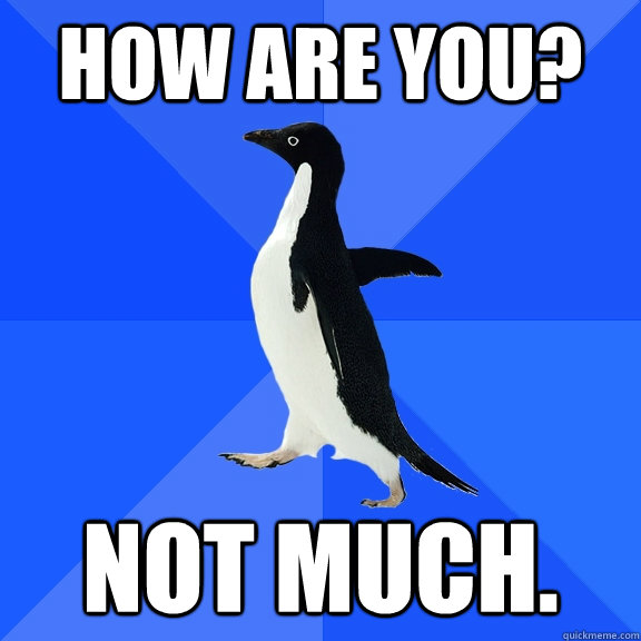 how are you not much - Socially Awkward Penguin