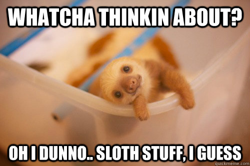 whatcha thinkin about oh i dunno sloth stuff i guess - Sloth thoughts
