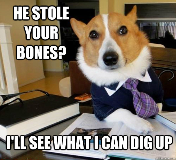 he stole your bones ill see what i can dig up - Lawyer Dog
