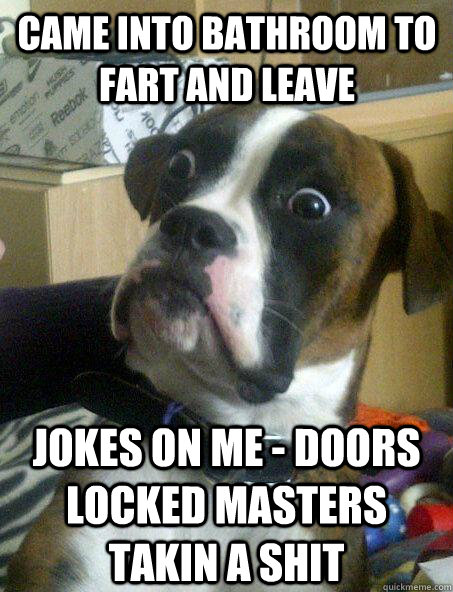 came into bathroom to fart and leave jokes on me doors loc - Baffled boxer