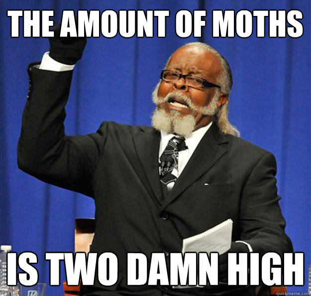 the amount of moths is two damn high - Jimmy McMillan
