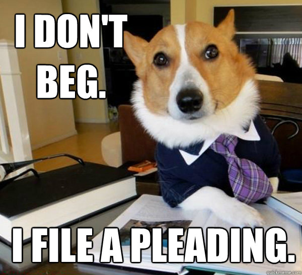 i dont beg i file a pleading - Lawyer Dog