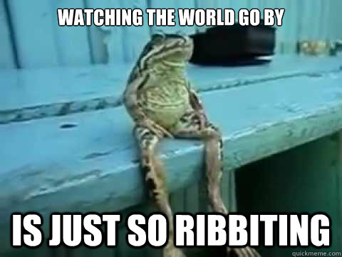 watching the world go by is just so ribbiting - SITTING FROG