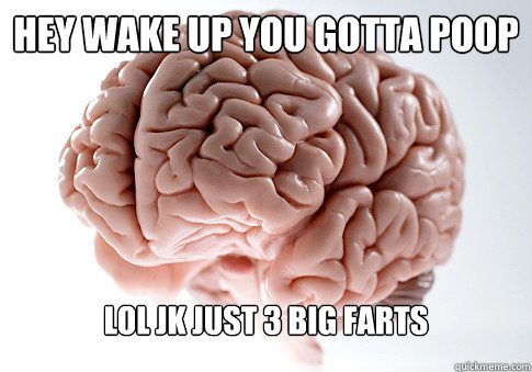 hey wake up you gotta poop lol jk just 3 big farts - Scumbag Brain