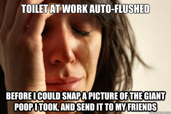 toilet at work autoflushed before i could snap a picture of - First World Problems