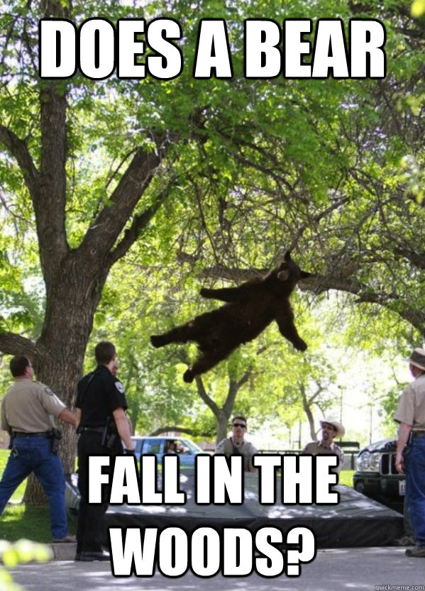 does a bear fall in the woods - Falling Bear
