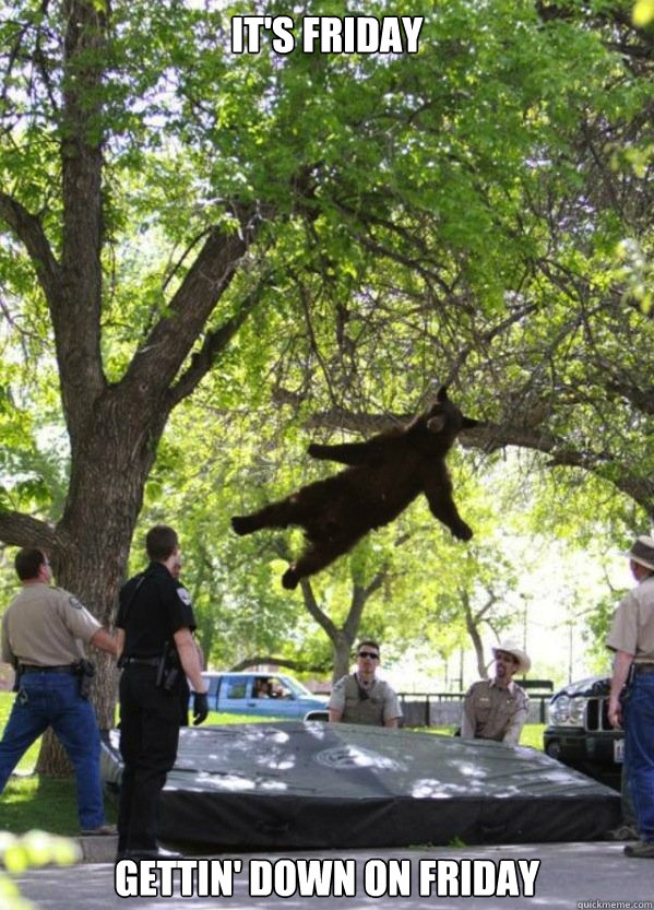 its friday gettin down on friday - Falling Bear