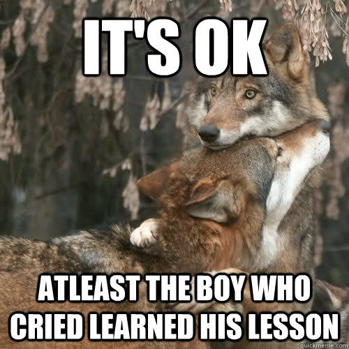 its ok atleast the boy who cried learned his lesson - Comfort Wolf