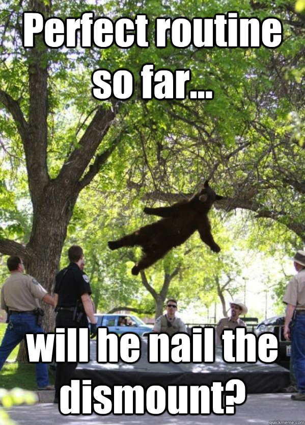 perfect routine so far will he nail the dismount - Falling Bear
