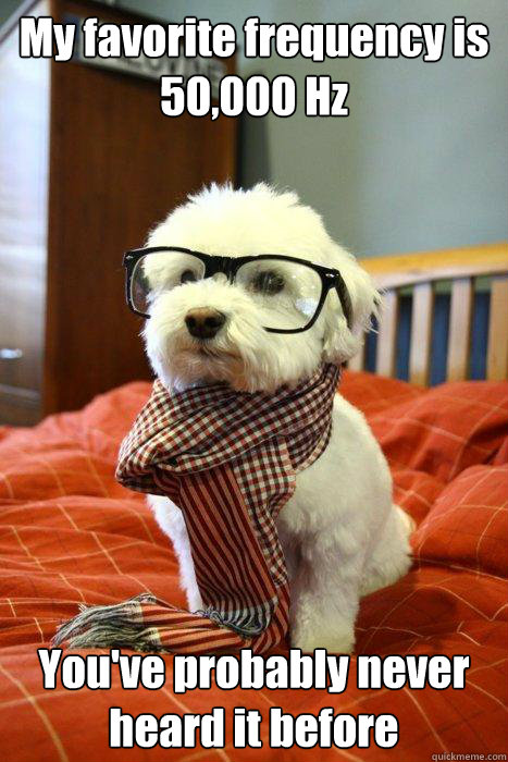 my favorite frequency is 50000 hz youve probably never hea - Hipster Dog