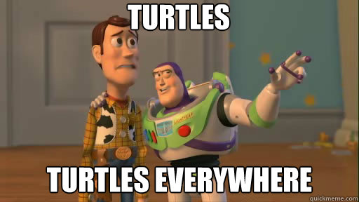turtles turtles everywhere - Everywhere