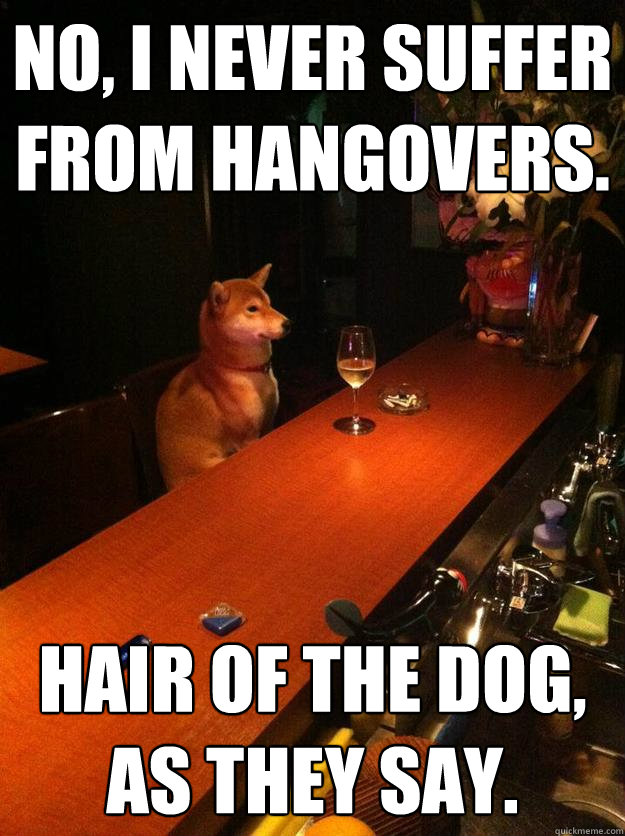 no i never suffer from hangovers hair of the dog as they -
