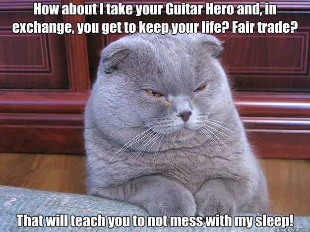 how about i take your guitar hero and in exchange you get  - Grumpy Cat