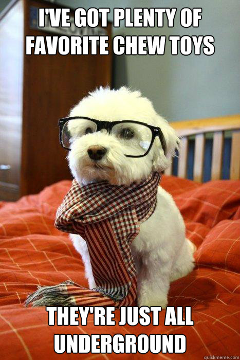 ive got plenty of favorite chew toys theyre just all under - Hipster Dog