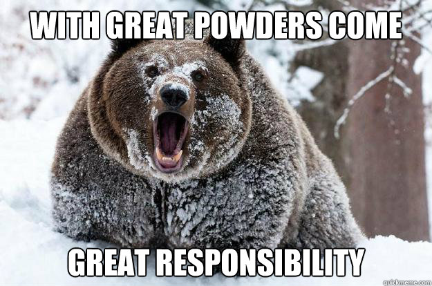 with great powders come great responsibility - Dubstep Bear