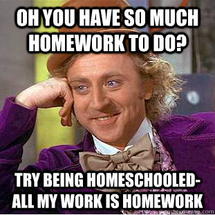 oh you have so much homework to do try being homeschooleda - Condescending Wonka
