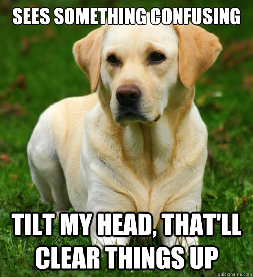 sees something confusing tilt my head thatll clear things  - Dog Logic