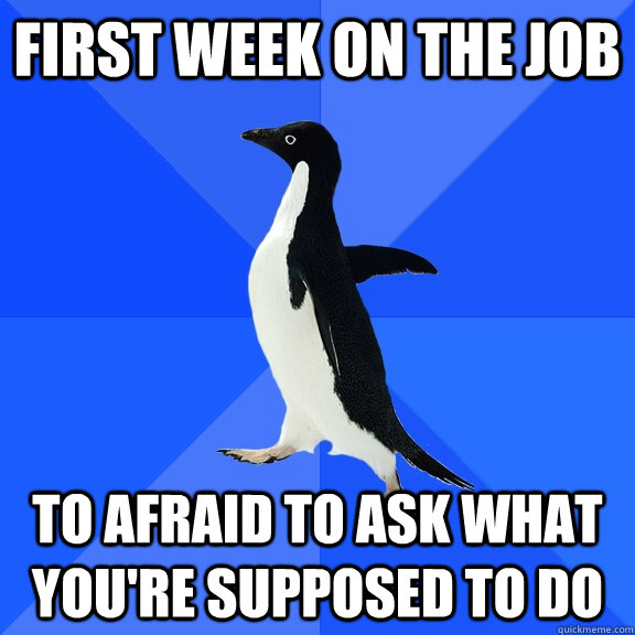 first week on the job to afraid to ask what youre supposed  - Socially Awkward Penguin