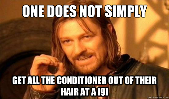 one does not simply get all the conditioner out of their hai - Boromir