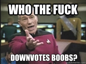 who the fuck downvotes boobs - Annoyed Picard